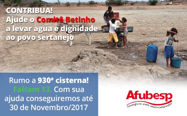 Colabore com o Comitê Betinho na construção de cisternas