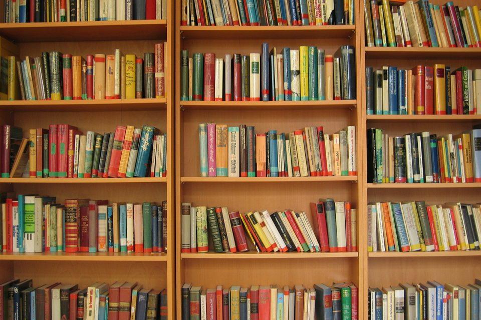 Dicas para explorar o mundo da leitura de graça em São Paulo