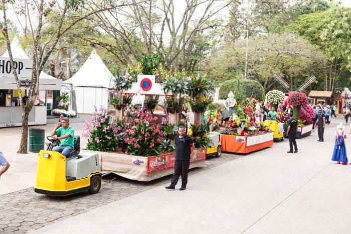 Expoflora, em Holambra, é passeio perfeito pra quem gosta de flores e paisagismo