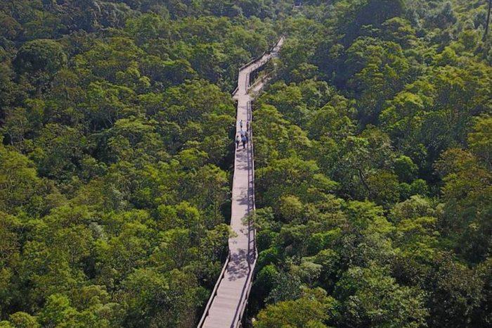 Inscrições encerradas - Visita ao Parque Ecológico Imigrantes é a próxima atividade do Qualidade de Vida